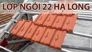 lop-ngoi-ha-long