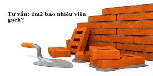 1m2-tuong-bao-nhieu-vien-gach