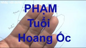 pham-hoang-oc-co-xay-nha-duoc-khong