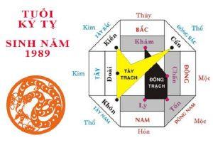 tuoi-ky-ty-xay-nha-huong-nao-1